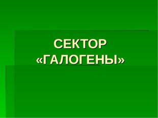 СЕКТОР «ГАЛОГЕНЫ»