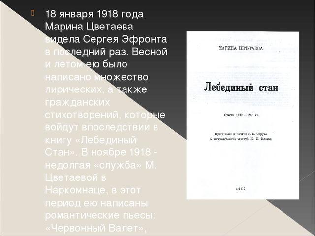 18 января 1918 года Марина Цветаева видела Сергея Эфронта в последний раз. Ве...