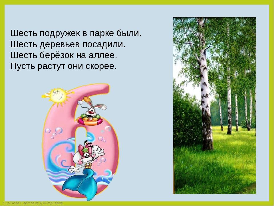 Шесть подружек в парке были. Шесть деревьев посадили. Шесть берёзок на аллее....