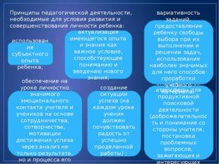 Принципы педагогической деятельности, необходимые для условия развития и сове