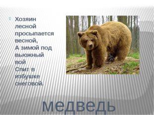 медведь Хозяин лесной просыпается весной, А зимой под вьюжный вой Спит в из