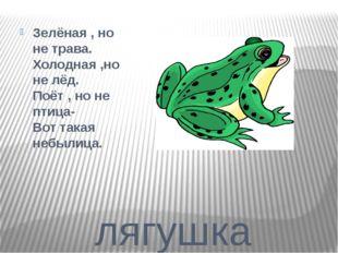лягушка Зелёная , но не трава. Холодная ,но не лёд. Поёт , но не птица- Вот т