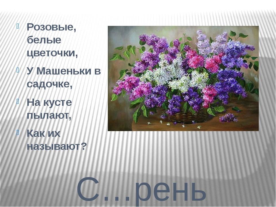 С…рень Розовые, белые цветочки, У Машеньки в садочке, На кусте пылают, Как их...