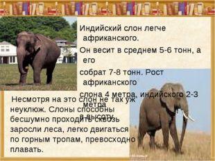 Несмотря на это слон не так уж неуклюж. Слоны способны бесшумно проходить ск