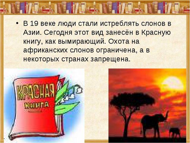 В 19 веке люди стали истреблять слонов в Азии. Сегодня этот вид занесён в Кра...