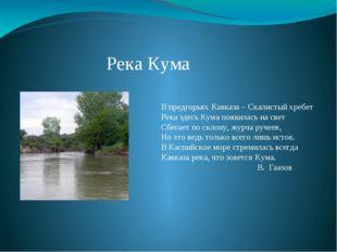 Река Кума В предгорьях Кавказа – Скалистый хребет Река здесь Кума появилась н