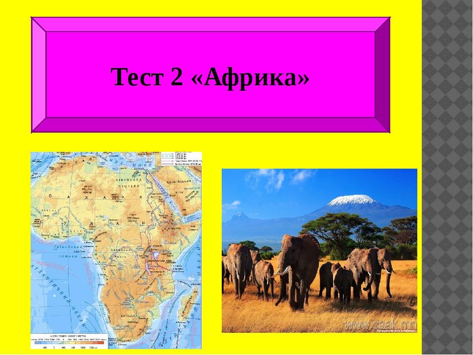 Тест 2 «Африка»