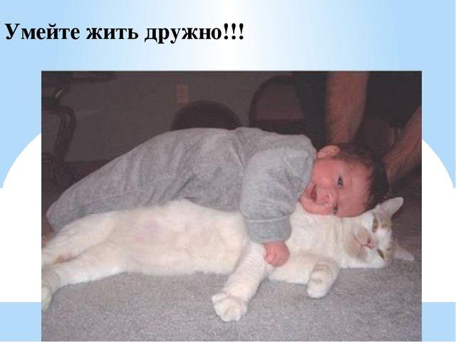 Умейте жить дружно!!!