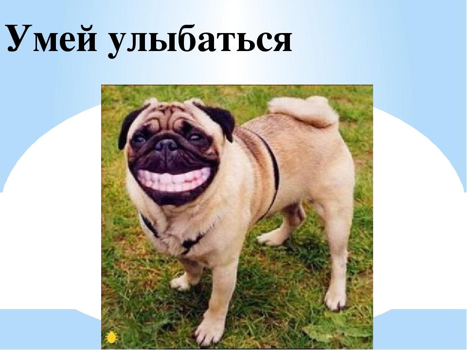 Умей улыбаться