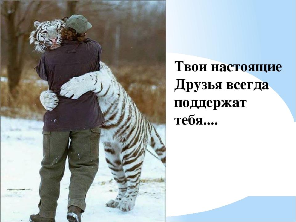 Твои настоящие Друзья всегда поддержат тебя....