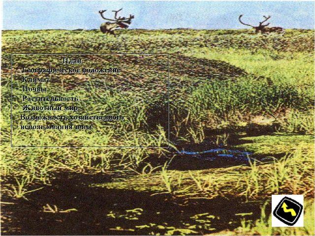 План Географическое положение Климат Почвы Растительность Животный мир Возмо...