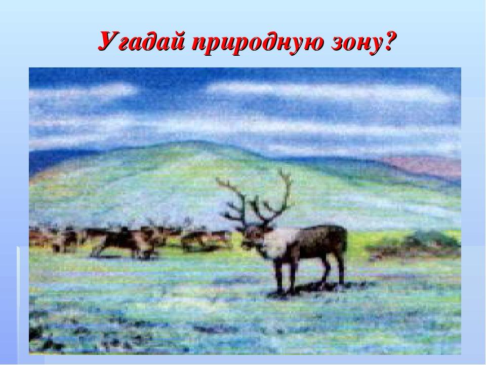 Угадай природную зону?