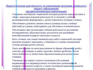 Педагогическая деятельность по реализации программ начального общего образов