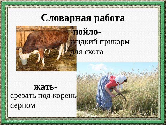 Словарная работа пойло- жидкий прикорм для скота жать- срезать под корень сер...
