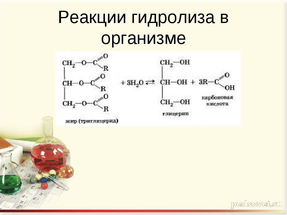 Реакции гидролиза в организме