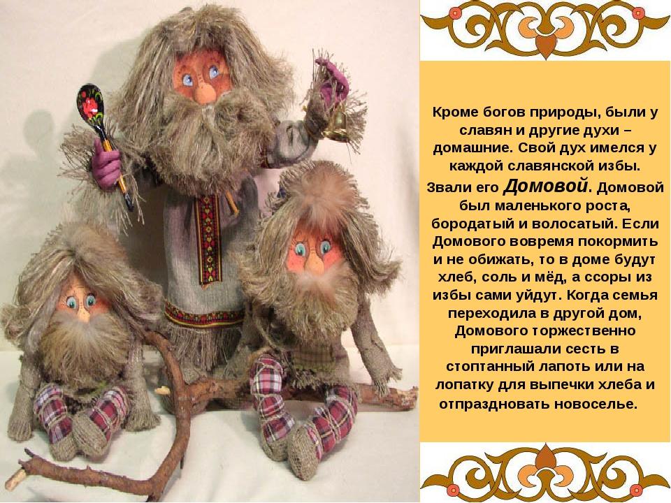 Кроме богов природы, были у славян и другие духи – домашние. Свой дух имелся...