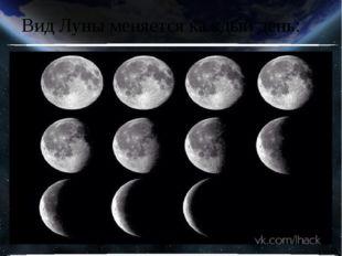 Вид Луны меняется каждый день: