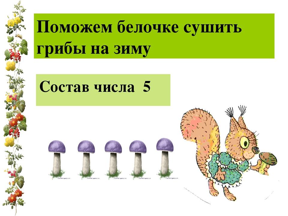 Поможем белочке сушить грибы на зиму Состав числа 5