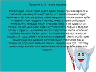 Правило 2. Активное жевание. Физкультура нужна также и для зубов. Среди причи