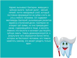 Кариес вызывают бактерии, живущие в зубном налете. Зубной налет - мягкий, лип
