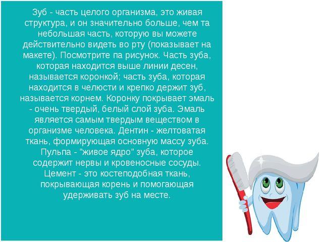 Зуб - часть целого организма, это живая структура, и он значительно больше, ч...