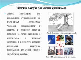 Значение воздуха для живых организмов Воздух необходим для нормального сущест