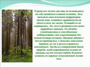 В прошлом лесные массивы не испытывали на себе заметного влияния человека. Л