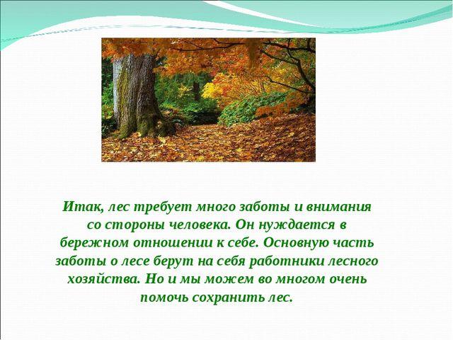 Итак, лес требует много заботы и внимания со стороны человека. Он нуждается...