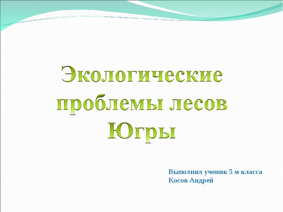 Выполнил ученик 5 м класса Косов Андрей