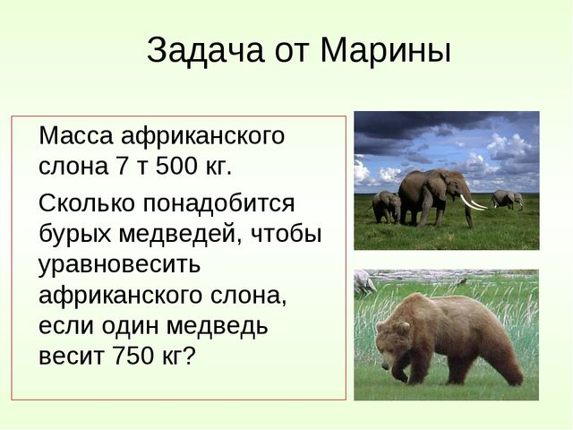Задача от Марины Масса африканского слона 7 т 500 кг. Сколько понадобится б...