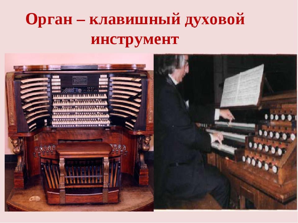 Орган – клавишный духовой инструмент