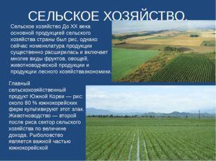 СЕЛЬСКОЕ ХОЗЯЙСТВО. Сельское хозяйство До XX века основной продукцией сельско