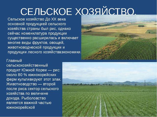 СЕЛЬСКОЕ ХОЗЯЙСТВО. Сельское хозяйство До XX века основной продукцией сельско...