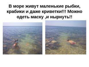 В море живут маленькие рыбки, крабики и даже криветки!!! Можно одеть маску ,и