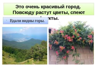 Это очень красивый город. Повсюду растут цветы, спеют фрукты. Вдали видны горы.