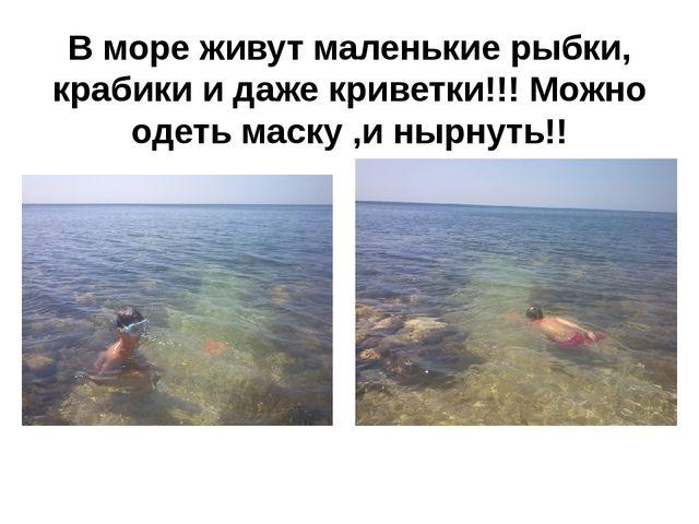 В море живут маленькие рыбки, крабики и даже криветки!!! Можно одеть маску ,и...