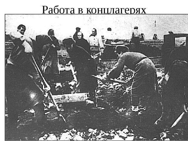 Работа в концлагерях