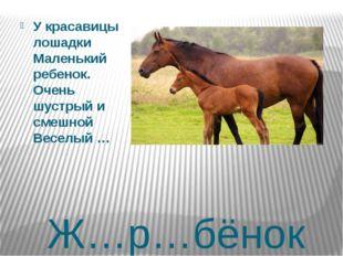 Ж…р…бёнок У красавицы лошадки Маленький ребенок. Очень шустрый и смешной Весе