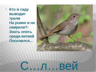 С…л…вей Кто в саду выводит трели На рожке и на свирели?: Знать опять среди ве