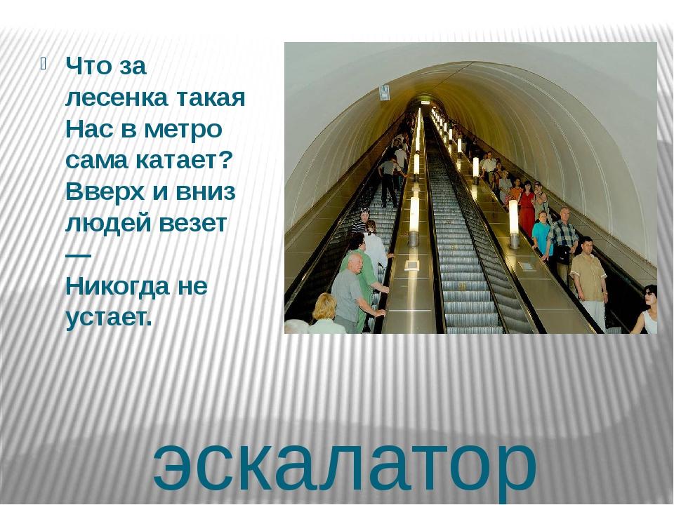 эскалатор Что за лесенка такая Нас в метро сама катает? Вверх и вниз людей ве...