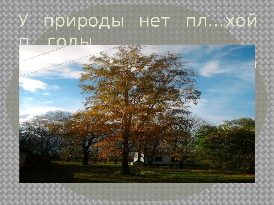 У природы нет пл…хой п…годы, Всякая п…года благодать.