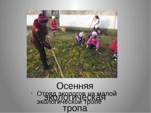 Осенняя экологическая тропа Отряд экологов на малой экологической тропе