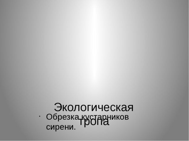 Экологическая тропа Обрезка кустарников сирени.