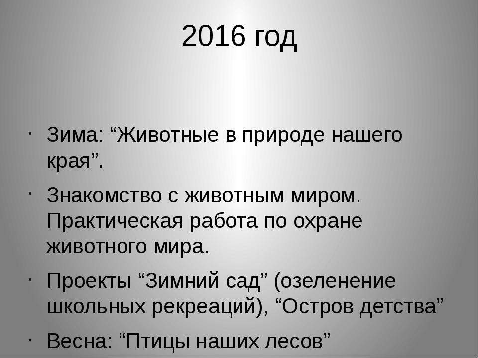 """2016 год Зима: """"Животные в природе нашего края"""". Знакомство с животным миром...."""