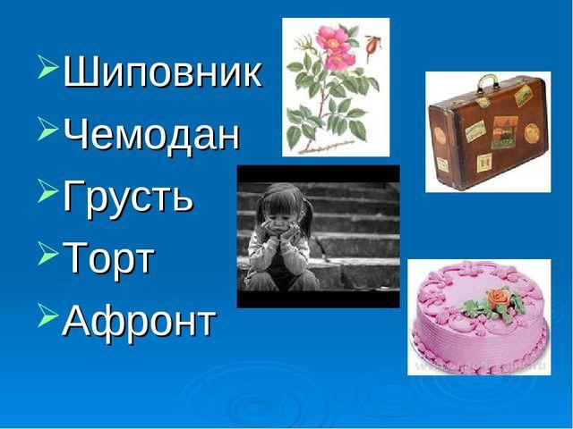 Шиповник Чемодан Грусть Торт Афронт