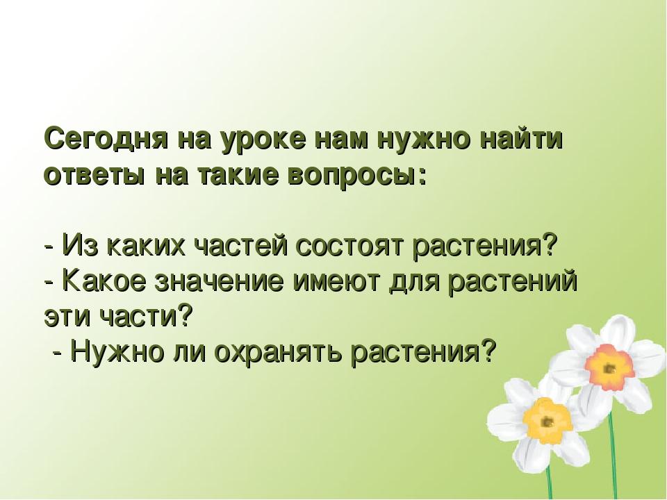 Сегодня на уроке нам нужно найти ответы на такие вопросы: - Из каких частей с...