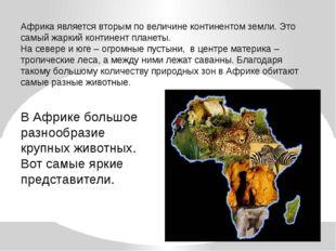 Африка является вторым по величине континентом земли. Это самый жаркий контин
