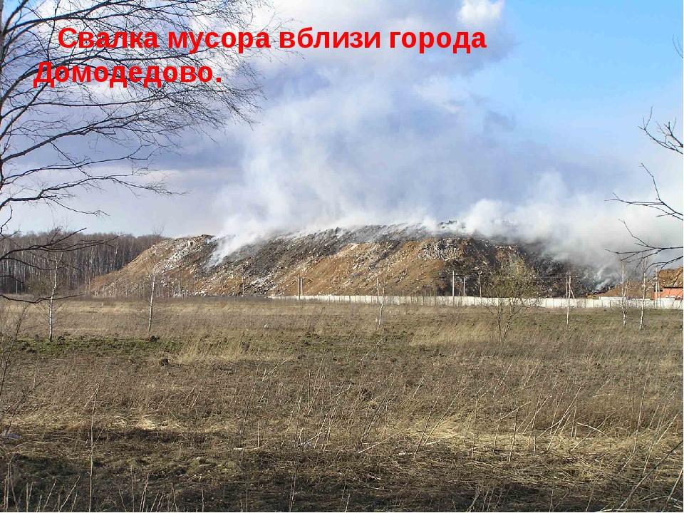 Свалка мусора вблизи города Домодедово.