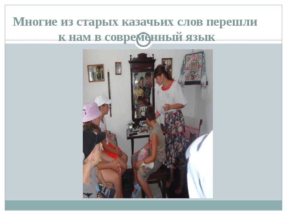 Многие из старых казачьих слов перешли к нам в современный язык