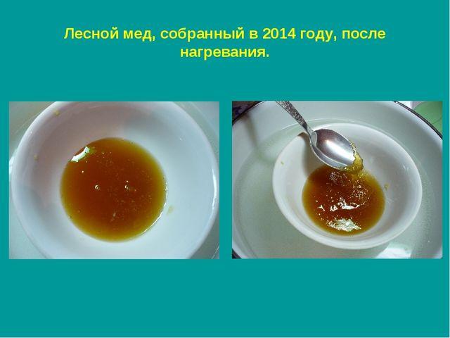 Лесной мед, собранный в 2014 году, после нагревания.